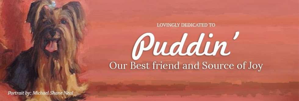 FeaturedImage_puddin